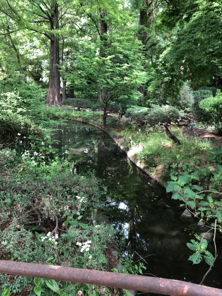 ふかや緑の王国園内の様子2