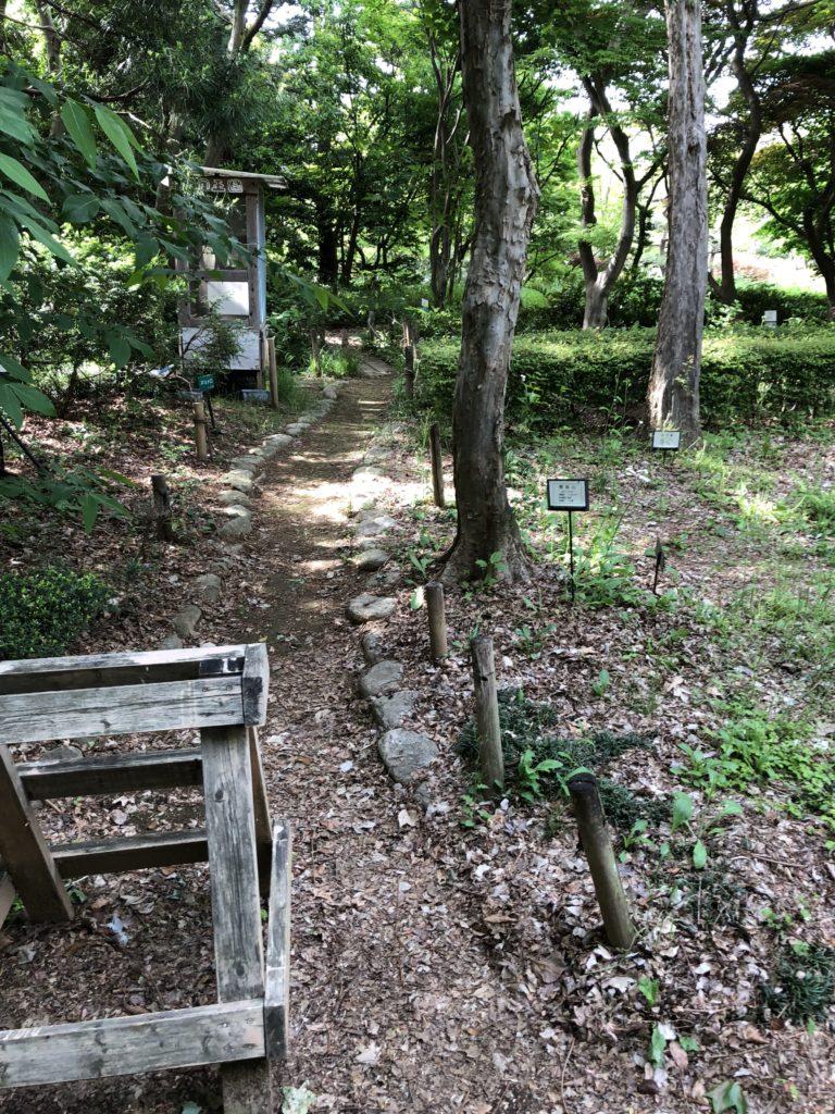 ふかや緑の王国園内の様子1